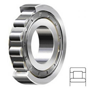 1.772 Inch | 45 Millimeter x 3.346 Inch | 85 Millimeter x 0.906 Inch | 23 Millimeter  CONSOLIDATED BEARING NU-2209E C/3  Cylindrical Roller Bearings