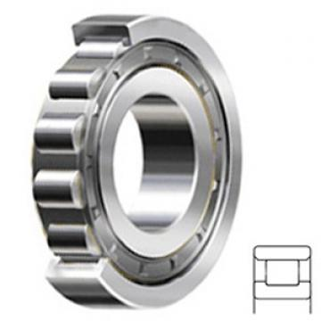 7.5 Inch | 190.5 Millimeter x 10 Inch | 254 Millimeter x 1.25 Inch | 31.75 Millimeter  CONSOLIDATED BEARING RXLS-7 1/2 C/3  Cylindrical Roller Bearings