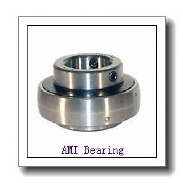 AMI MUCHPL206-19RFCW  Hanger Unit Bearings