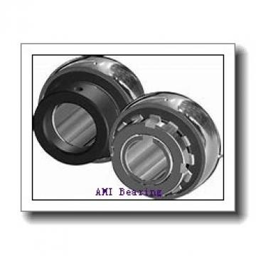 AMI MUCHPL201-8RFW  Hanger Unit Bearings