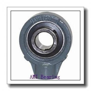 AMI MUCHPL204RFCW  Hanger Unit Bearings