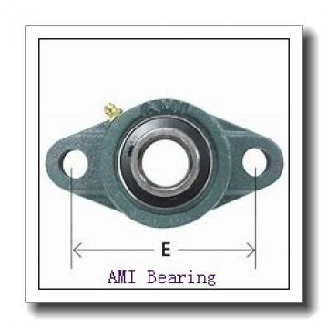 AMI SER210  Insert Bearings Cylindrical OD
