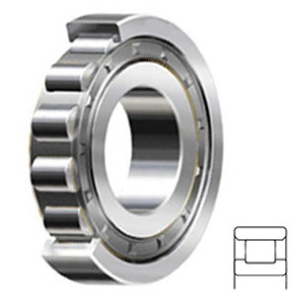 9 Inch | 228.6 Millimeter x 12 Inch | 304.8 Millimeter x 1.5 Inch | 38.1 Millimeter  CONSOLIDATED BEARING RXLS-9  Cylindrical Roller Bearings #1 image