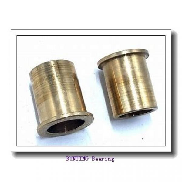 BUNTING BEARINGS CB101608 Bearings #1 image
