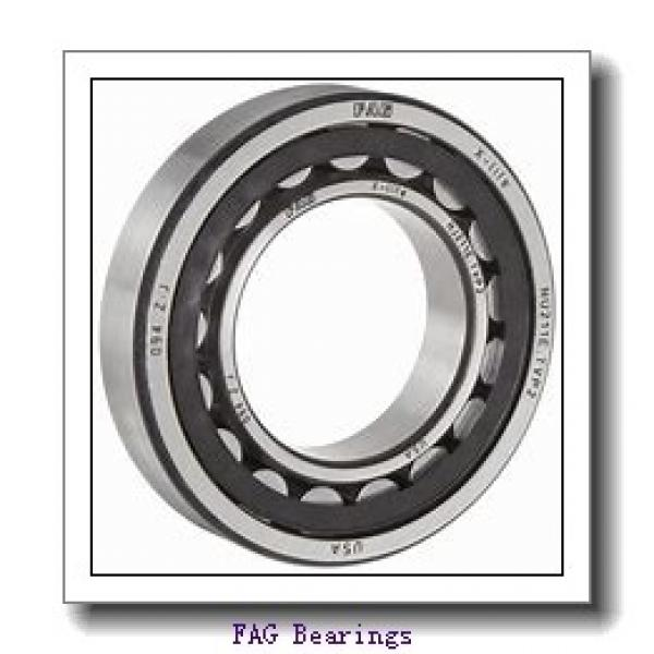 FAG NU213-E-M1-C4  Cylindrical Roller Bearings #1 image