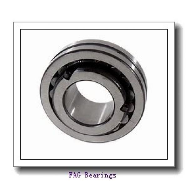 FAG NU319-E-M1-C3  Cylindrical Roller Bearings #3 image