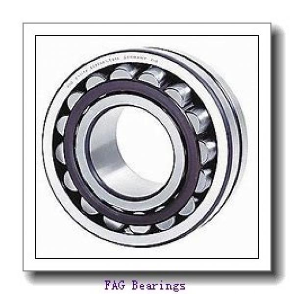 FAG NU213-E-M1-C4  Cylindrical Roller Bearings #2 image
