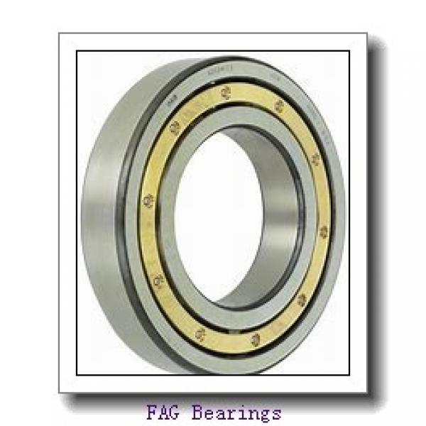 FAG NU319-E-M1-C3  Cylindrical Roller Bearings #2 image