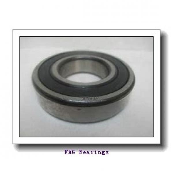 FAG NU319-E-M1-C3  Cylindrical Roller Bearings #1 image